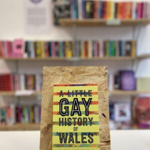 Cymraeg: Copi o 'A Little Gay History of Wales' yn sefyll ar stondin llyfrau, tu blaen silffoedd o lyfrau yn y cefndir. English: A copy of 'A Little Gay History of Wales' sits on a stand in front of multiple shelves of other books.